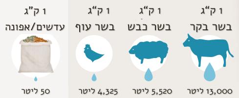 השוואה בין קטניות לבין סוגי בשר שונים מבחינת בזבוז מים מקור: FAO